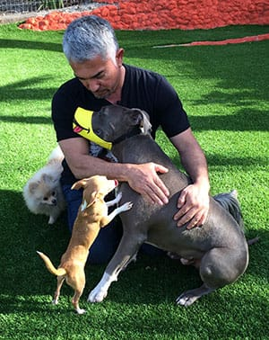 Cesar Millan sits with happy dog using new Funny Muzzle