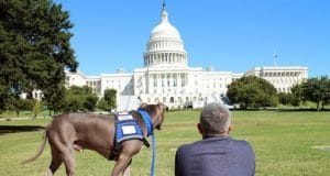 cesar-milan-outside-the-white-house-with-pitbull