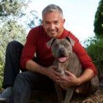 Los 5 Mejores Consejos De César Para Tener Un Perro Equilibrado