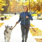 7 Tips For Establishing Leadership With Your Dog