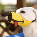Why Cesar Millan Created The Funny Muzzle