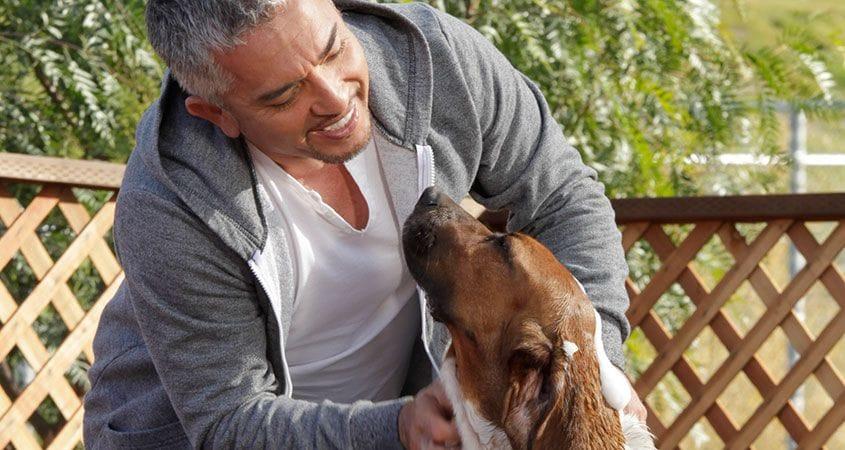 How Often To Bathe A Dog When A Dog Bath Is Necessary Cesar S Way