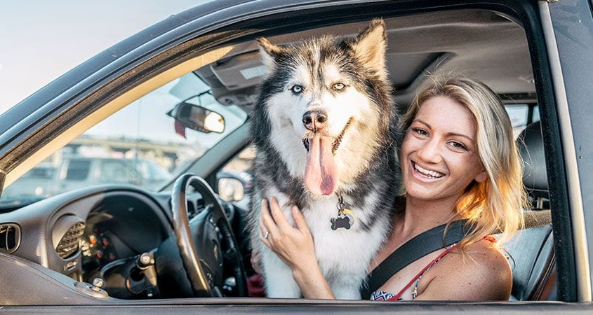 Safe Ways To Transport Your Dog In Your Car | Cesar's Way