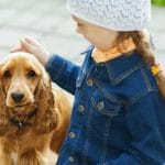 10 Best Dog Breeds For Families