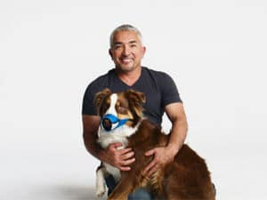 Cesar Millan sits with pretty dog using the new Funny Muzzle