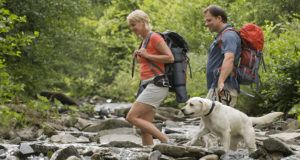 dog hiking with owner - cesar's way