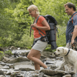 Go The Distance! Hiking With Your Dog