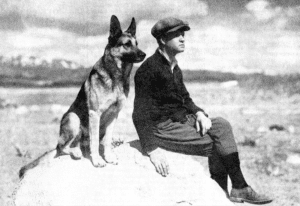 Strongheart german sheppard sitting next to man