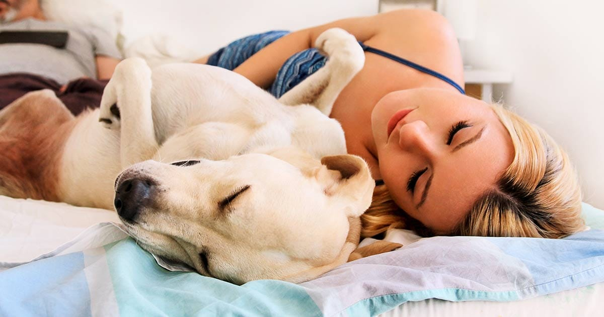 7 Reasons Why Sleeping With Your Dog Is Actually Good For You | Cesar's Way
