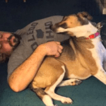 Man Goes To Adoption Event And Reuniting With His Long-Lost Dog From A Previous Relationship