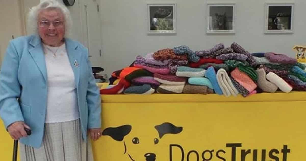 89-Year-Old Woman Has Knitted More Than 450 Blankets And Coats For Shelter Dogs