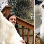 Meet Eris: The Borzoi Sighthound With The World's Longest Nose