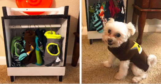 Doggie Loves Clothes So Much His Grandpa Built Him His Own Adorable Closet