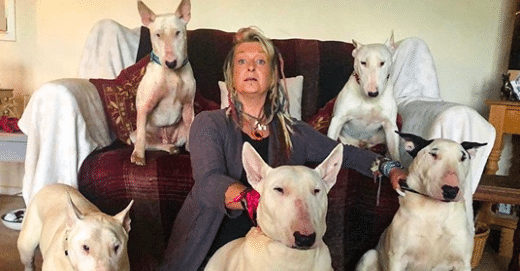 Man Made His Wife Choose Between Her Rescue Dogs And Him - She Picked The Dogs
