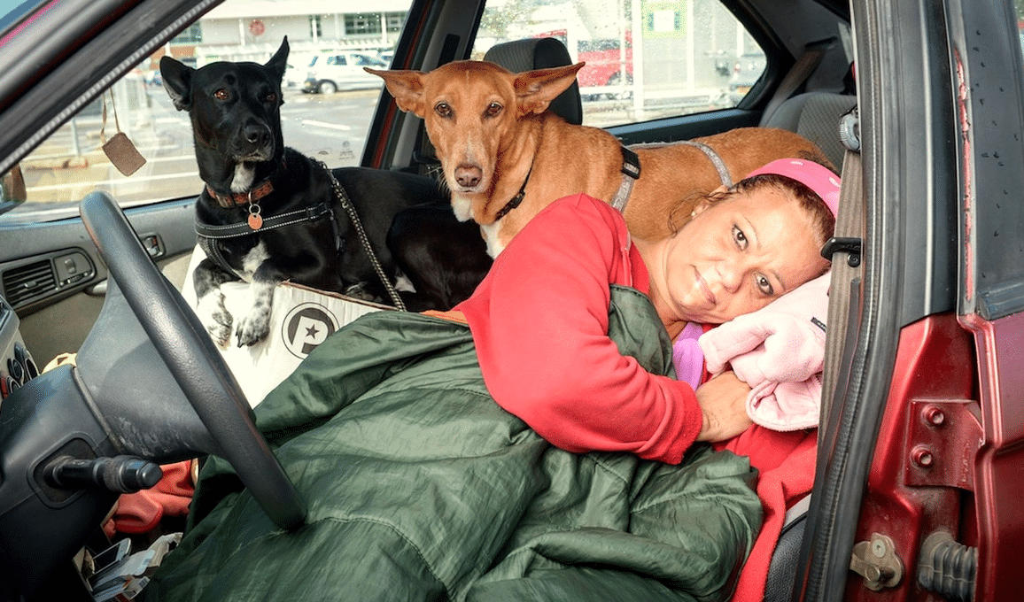 Teacher Lived Out Of Her Car Because She Refused To Give Up Her Dogs