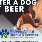 Busch Is Offering A 3-Month Supply Of Beer To People That Foster A Dog During COVID-19 Crisis