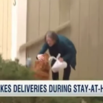 Dog Delivers Groceries To Isolated Neighbor With Health Problems