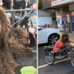 BMX Legend Goes Viral For Biking Around Town With His Four Dogs