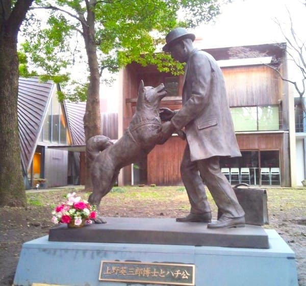 Hachiko dog statue with owner - Cesar's Way