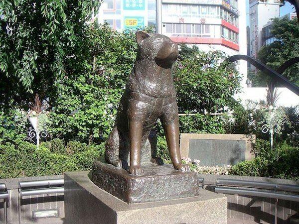 Hachiko dog statue - Cesar's Way