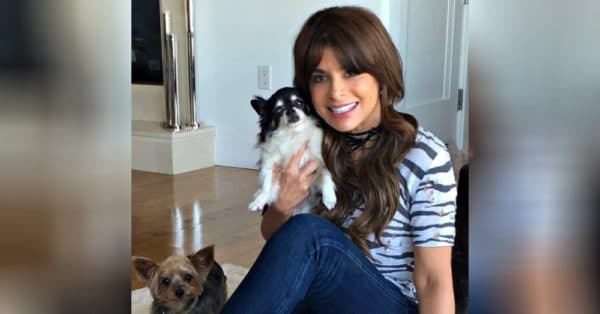 Paula Abdul Left Heartbroken After Both Of Her Dogs Died In The Same Week