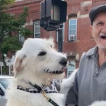 Dog Reunites With His Favorite Neighbor After He Had Been Sick For Weeks