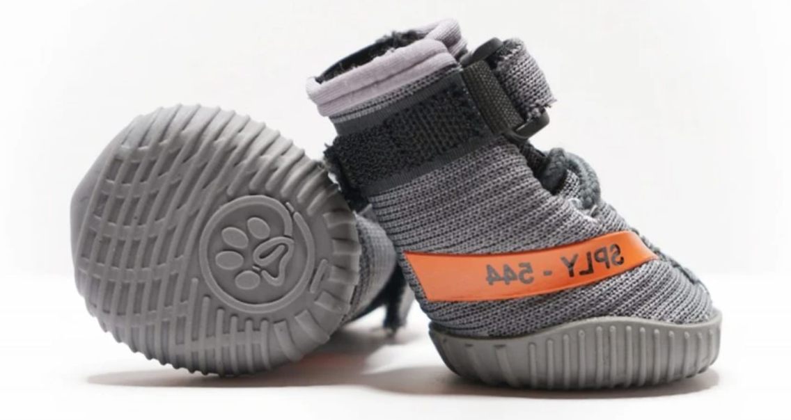 Your Dog Yeezy-Inspired Sneakers