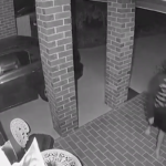 Brave Tiny Dog Chases Burglars Off The Property