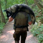 Park Ranger Saves Dehydrated Dog's Life And Carries Him To Safety
