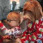 Little Boy And Dog Wake Up And Have The Cutest Morning Routine