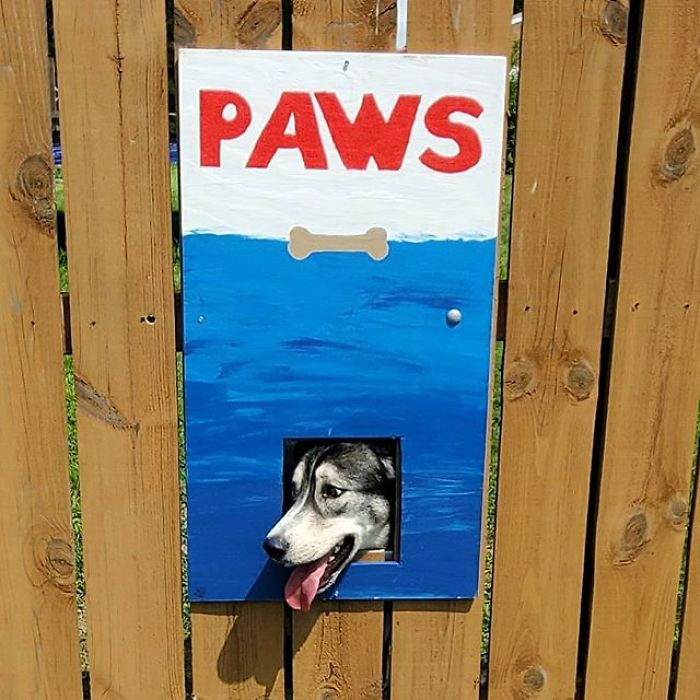 Dad Paints Funny Posters Around The 'Dog Hole' In Their Fence   Cesar's Way