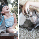 Little Girl And Her Pit Bull Have The Most Adorable Relationship