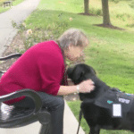 Navy Veteran Explains How Her Service Dog Saved Her Life