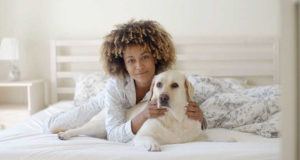 Dog laying down in bed with you - woman with dog - Cesar's Way