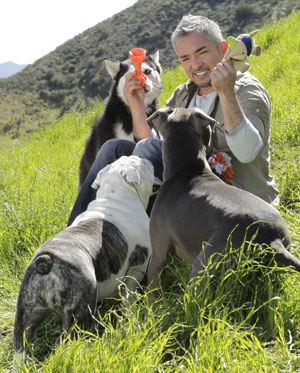 Cesar Milan with a bunch of dogs on a mountainside