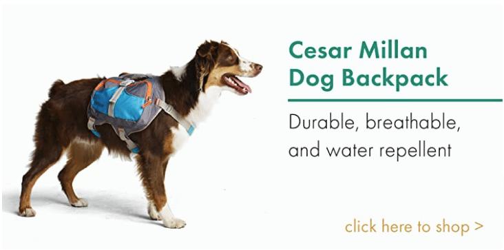 Dog Backpack Cesar Millan